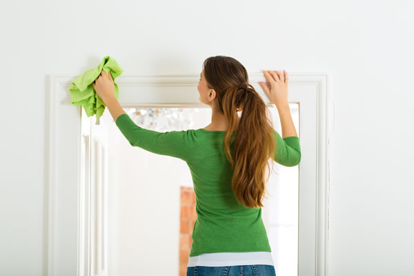 Domestic Cleaning Services Norwich